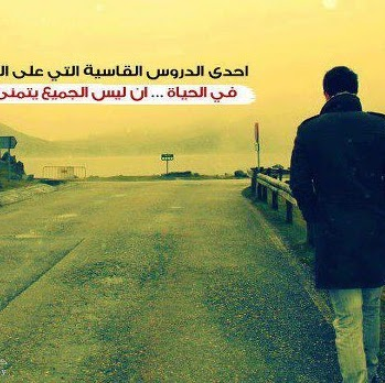 Mohamed Abdelwhab Photo 6