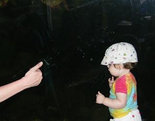 ASL Fish