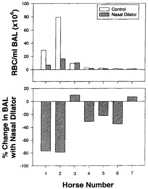 Nasal strip application decreased the severity of exercise-induced pulmonary hemorrhage (EIPH) in 5 of 7 horses running at 12 m/s [86]. Notice that the greatest attenuation of EIPH was seen in those two horses with the most severe EIPH under control conditions.