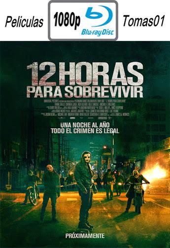 12 Horas Para Sobrevivir (2014) BRRip1080p