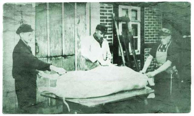 """Hausschlachter Wilhelm Kruse (Wahmbeckerheide) mit seinen Helfern beim """"Rasieren"""" des geschlachteten Schweines. Das Foto ist 1960 vor dem Hause Multhaupt in Wahmbeckerheide entstanden. Foto: Archiv Wiemann"""
