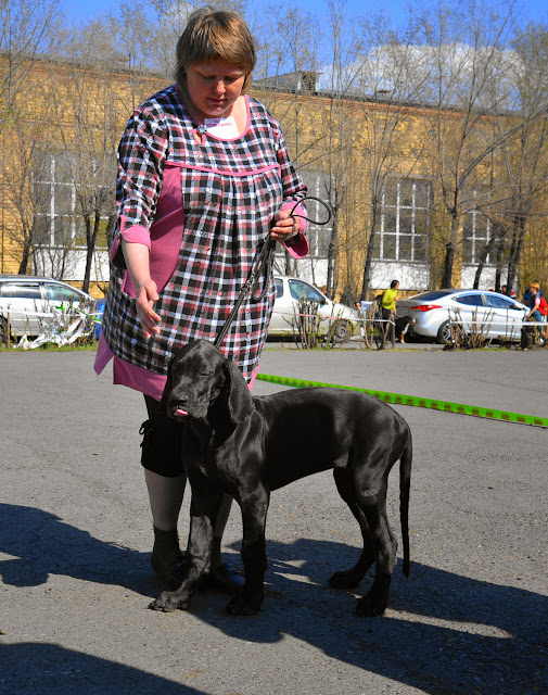 Кубок Аризоны-14(ПК)+ЧРКФ, Красноярск, 27 апреля 2014 DSC_5482