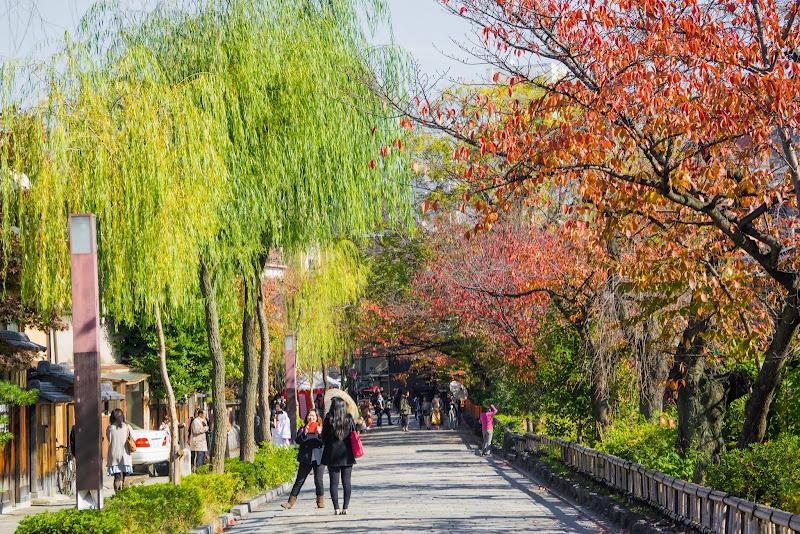京都 祇園 白川南通 写真1