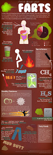 Farts Infographic