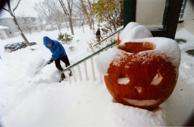 Halloween in Minnesota www.roomsrevamped.com