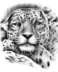 tatuaże  tygrys
