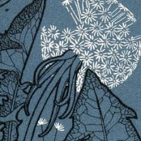 Janna Janzen's avatar