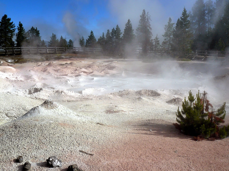Lower Geyser Basin - Fountain Paint Pot