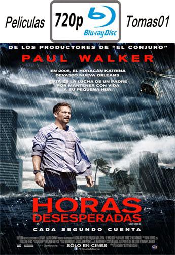 Horas Desesperadas (2013) BRRip 720p