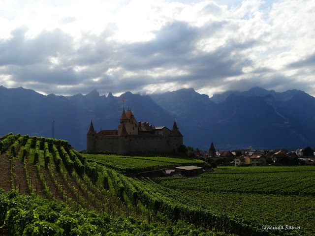 passeando - Passeando pela Suíça - 2012 - Página 9 DSC02286