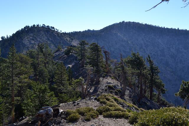 ridge leading to Mount Baden-Powell