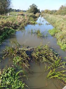 River Minsmere at Eastbridge