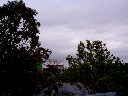 Baitul Fazal Mridhabari Jame Masjid