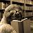 Dark Sloth