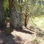 GNW arrow post near Heaton tower (359294)