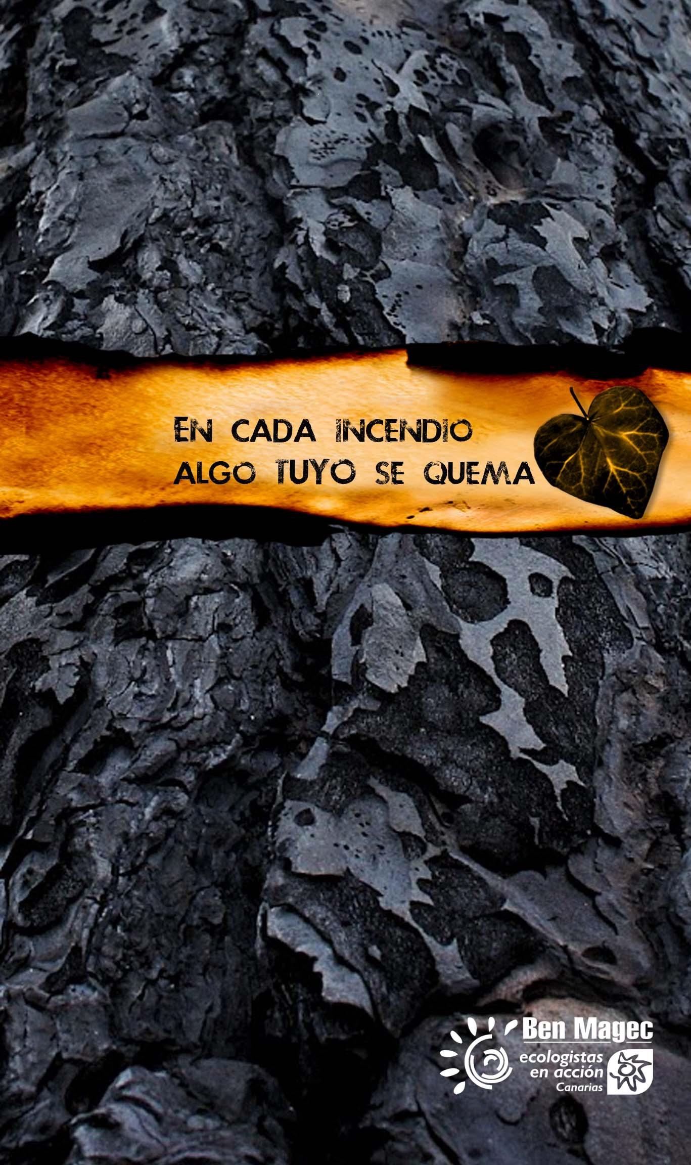 Campaña De Sensibilización Sobre Los Incendios Forestales En