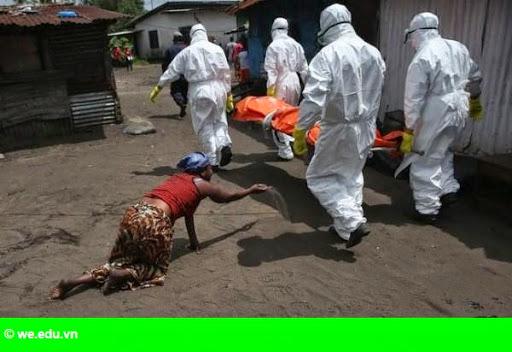 Hình 1: Các nước Tây Phi kêu gọi quốc tế viện trợ sau đại dịch Ebola