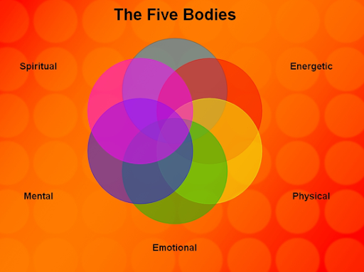The Five Bodies Image