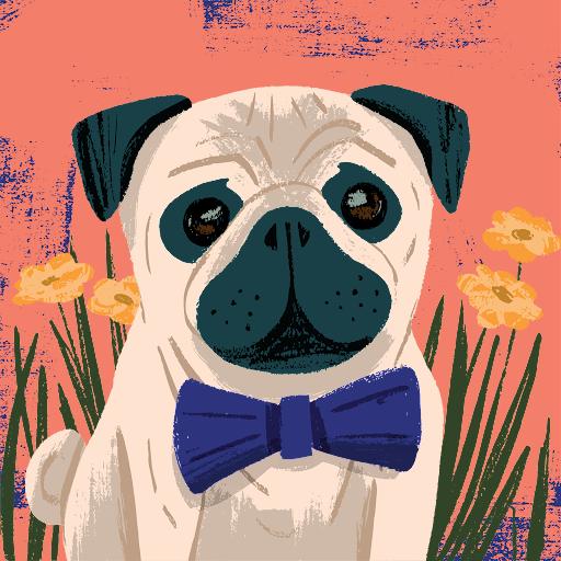 Ding Ma Photo 23