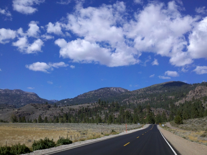 High Sierra • Sonora Pass East