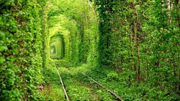 Tunel del amor en Kleven, Ucrania