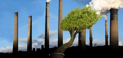 Lançada a Campanha da Fraternidade 2011 que discute mudanças climáticas e aquecimento global
