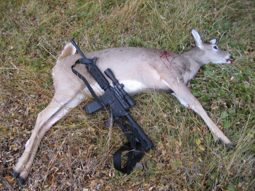 Good .223 Bullet for Deer? - Hunting Forum