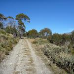 Cascade Trail (283745)