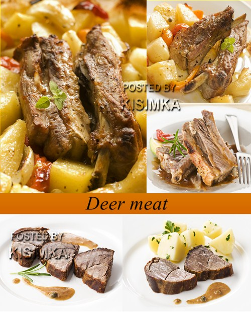 Stock Photo: Deer meat