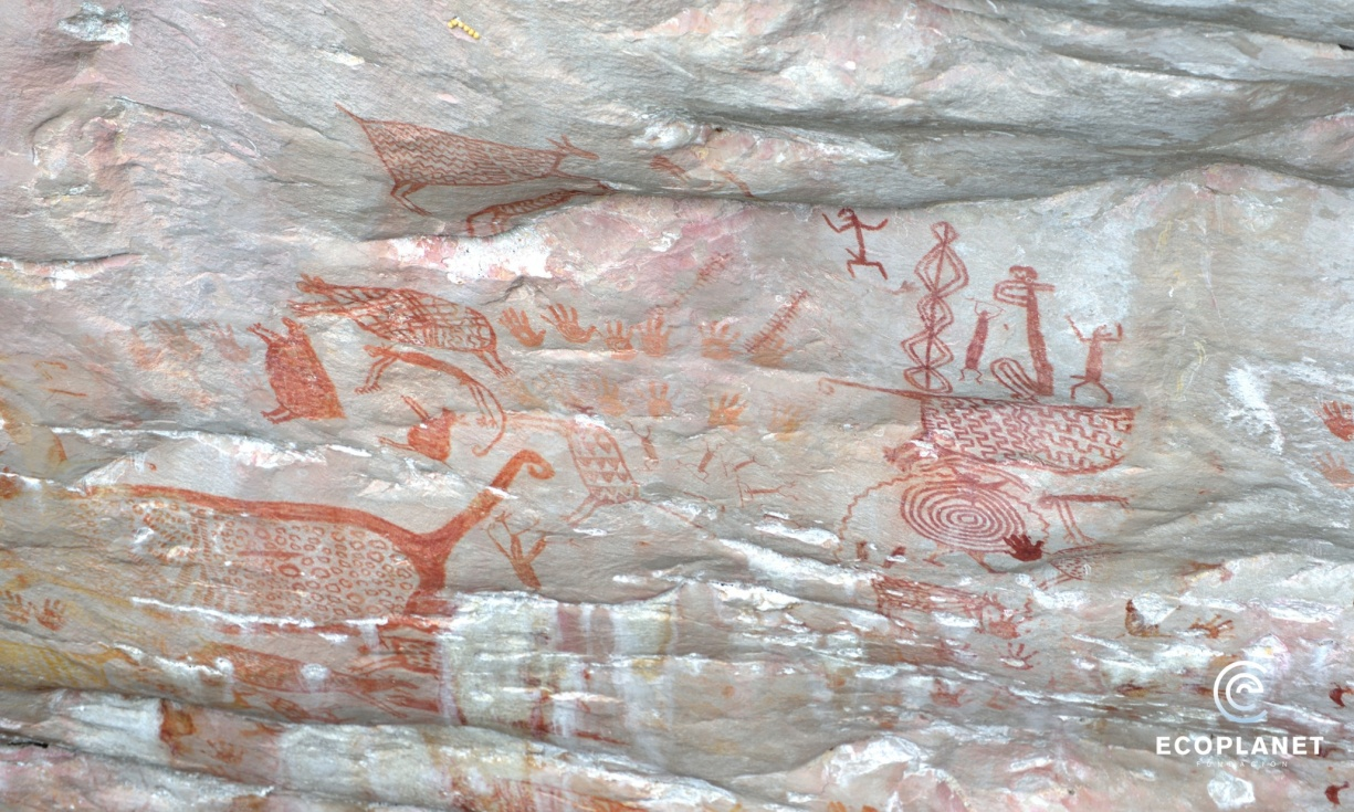 Heritage: World's most inaccessible art found in the heart of the Colombian jungle
