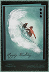 Extreme Surfer Birthday