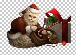 Christmas Cat~FBR 11-11-05     368 KB.jpg