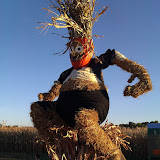 Pumpkin Man at Sever's Corn Maze