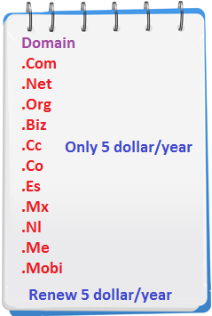 Domain only 5 dollar