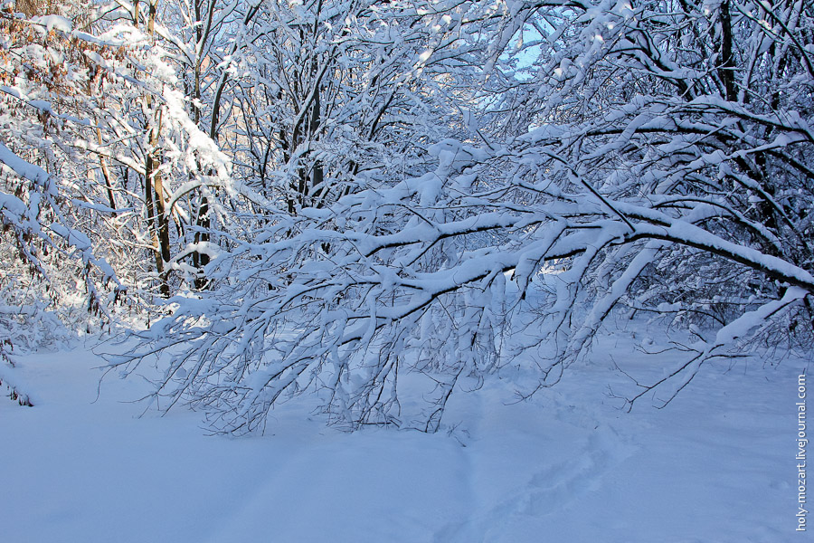 Зимняя Припять