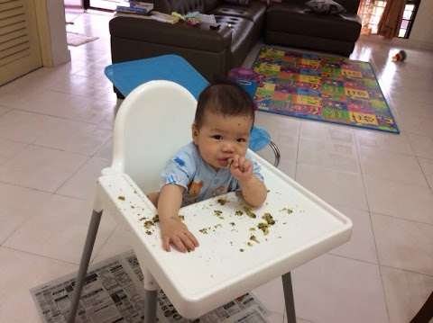Baby lead weaning 宝宝主导式断奶