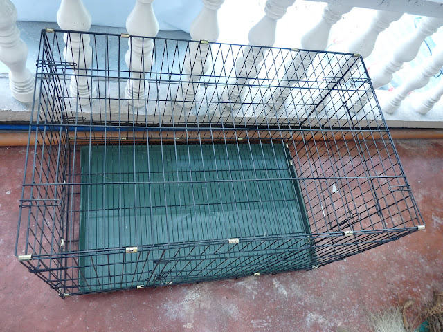 P1180846 - For Sale:  Fold Down Dog Crate - Free Advertisement