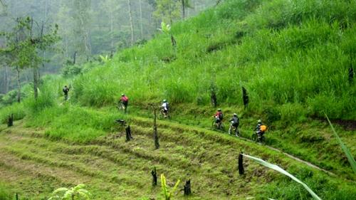 Hujan membuat GowesJelajah Coban Rondo semakin mengasyikkan karena membuat kami tidak terlalu berkeringat dan lebih berkonsentrasi untuk menghadapi track yang licin.