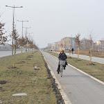 Novi Sad bulevar