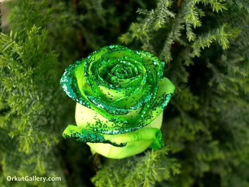 ممــاٌّ راقــ لــ/ــ..ــي *-* beautiful-flowers-at