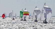 J/24 fleet sailing one-design under spinnaker