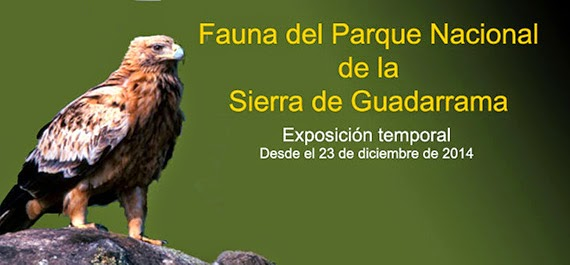 Exposición sobre el Parque del Guadarrama en el Museo Nacional de Ciencias Naturales