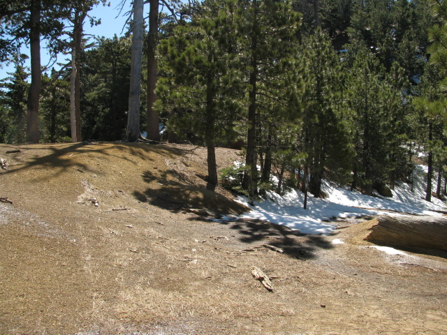 junction of trail with road