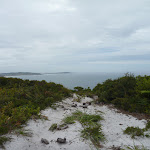 Sandy track with views in the background at Awabakal Viewpoint (391817)