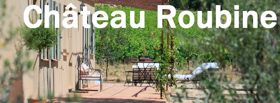 Chateau+Roubine-La+Mas+des+Candeliers-Lorgues-dracenie-var-provence-VTT-vigne+et+vin-oeunotourisme-piscine-nature-detente