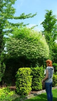 Ogrody Kapias Goczółkowice