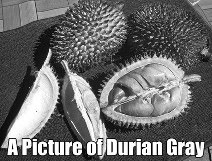 A Picture of Durian Gray