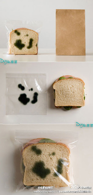 photographs of a sandwich in a clear plastic bag with fake mold spots