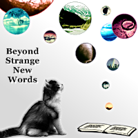 Beyond Strange New Words