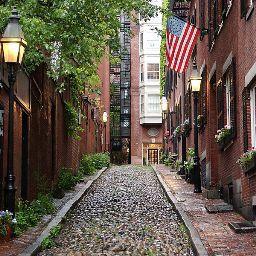 Roya Hashemi